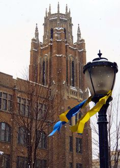 Blue and gold ribbons mean March Madness at Marquette University.