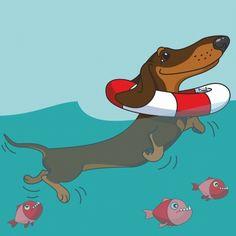 Dachshund Clube Baby Puppies, Cute Puppies, Dachshund Art, Daschund, Weenie Dogs, Dog Illustration, Puppy Breeds, Scottish Terrier, Cartoon Pics