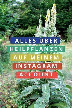 Ich arbeite seit 2008 mit Heilpflanzen, gebe Workshops und Kurse. Auf meinem Instagram-Account teile ich Kräuterwissen und zeig, was man mit den Schätzen der Natur alles so machen kann.   #instagram #rubynagel #wildkräuter #heilpflanzen Workshop, Kraut, Profile, Hacks, Photo And Video, Instagram, Diy, Herbal Medicine, Reduce Stress