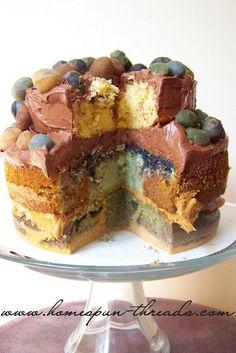 C1W14 Sedimentary and Metamorphic rock lesson...using cake!!