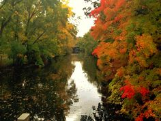 On the banks of the Red Cedar #MSU