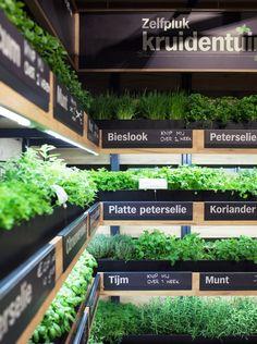 Help Yourself Herb Garden Deco Design, Cafe Design, Store Design, Eco Store, Farm Store, Fruit And Veg Shop, Indoor Farming, Vegetable Shop, Food Retail