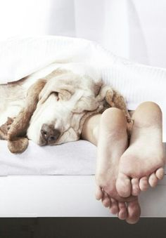 Sleeping..