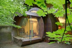 Grown-up tree house: One portion of the house consists of a sci-fi looking tube equipped w...