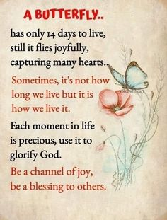 Uplifting Quotes, Inspirational Quotes, Longing Quotes, Butterfly Quotes, Life Is Precious, Daily Inspiration Quotes, Slice Of Life, A Blessing, Cute Quotes