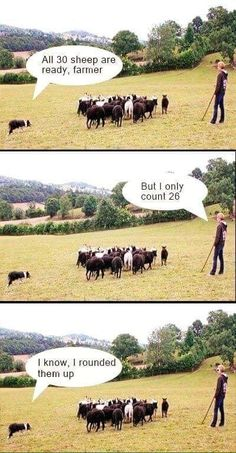 The ultimate farmer pun: 24 Pictures Only People Who Love Puns Will Think Are Funny Math Puns, Math Memes, Science Jokes, Math Humor, Maths, Math Quotes, Math Classroom, Classroom Ideas, Math Teacher