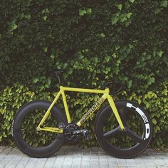 #fixie #hed