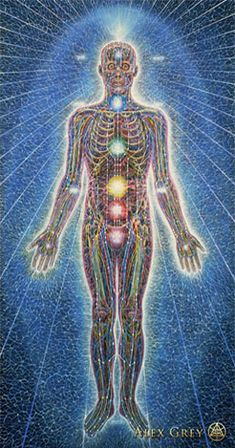 For millennia the indigenous Wisdom Keepers, the medicine men and women of the Americas (in fact, of the world), developed methodologies for healing that were based on upgrading the quality of the luminous energy field (LEF). Also known as a halo or aura, this energy...