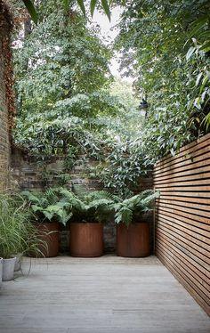 Back Gardens, Outdoor Gardens, Small Garden Design, Outdoor Landscaping, Outdoor Rooms, Dream Garden, Garden Planning, Garden Inspiration, Outdoor Lighting