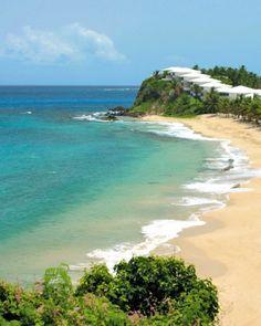 Barbuda: Palmetto Point Beach