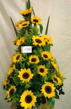 Productos – Floristeria la Maria Funeral Sprays, Ikebana, Floral Arrangements, Plants, Beautiful Flower Arrangements, Sunflowers, Flower Vases, Water Colors, Bouquets