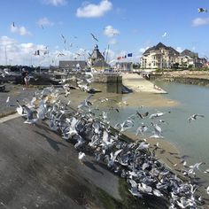 Photo: Port Guillaume