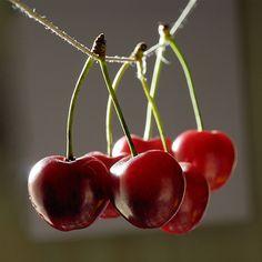 Cerezas.           Cherries
