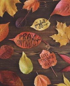 """""""Be joyful always, pray continually, give thanks in all seasons. 1 Thessalonians 5 16, Pray Continually, Thanksgiving Quotes, Happy Thanksgiving, Happy Fall Y'all, God Is Good, Give Thanks, Jesus Loves, Fall Halloween"""
