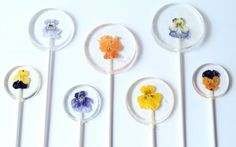 Handmade with organic edible violas and pansies, these lovely lollipops add lightness and brightness to any springtime sweets table.