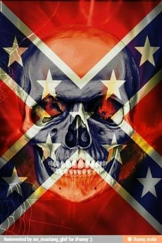 Rebal flag skull
