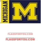 Michigan Wolverines 3x5 Double Sided Flag Michigan Wolverines, Astros Logo, Chevrolet Logo, Team Logo, Flags, Michigan Wolverines Football, National Flag
