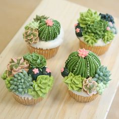 Bring in the family and create these awesome succulent cupcakes. We will ice our cupcakes with Buttercream and create fondant decorations to complete our edible Pretty Cakes, Cute Cakes, Beautiful Cakes, Amazing Cakes, Yummy Cakes, Kaktus Cupcakes, Succulent Cupcakes, Garden Cupcakes, Cupcake Recipes