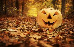 13 coisas que você deve saber sobre Halloween