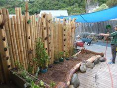 Bamboo as vertical garden space