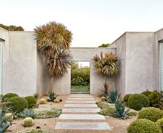 A contemporary coastal garden filled with exotic and native plants — Homes to Love - - On Victoria's Mornington Peninsula, a deft mix of exotic species and native beauties has delivered a dramatically different garden. Seaside Garden, Coastal Gardens, Beach Gardens, Garden Design London, Modern Garden Design, Landscape Design, Patio Design, Landscape Architecture, Coastal Landscaping