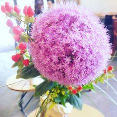 Pompom #12von12 #blumen #germanblogger #mamablogger_de #flowers #blogger_de #mommyblogger_de #elternblog
