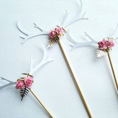 Pretty rosy antlers in the making More