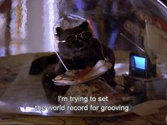 47 Reasons Salem From 'Sabrina The Teenage Witch' Is Your Spirit Animal - MTV