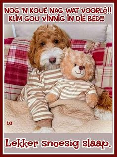Good Night Wishes, Good Night Quotes, Goeie Nag, Teddy Bear, Words, Afrikaans, African Fashion, Animals, Winter
