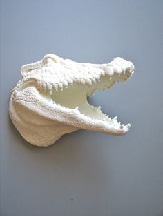 I want this for our new place so bad. Faux Taxidermy Alligator Head Wall Mount Angus the by mahzerandvee,