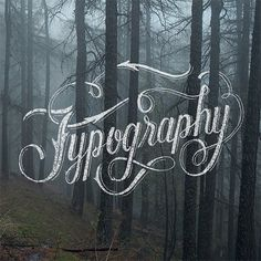 Best of Omatype // 2 by Nicolas Fredrickson, via Behance