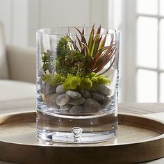 Add a touch of green to your space with silk flowers and artificial plants from Crate and Barrel. Browse life-like flowers, branches, succulents and more. Faux Succulents, Succulents Garden, Planting Flowers, Artificial Succulents, Glass Tealight Candle Holders, Hurricane Candle Holders, Vases Decor, Plant Decor, Centerpieces