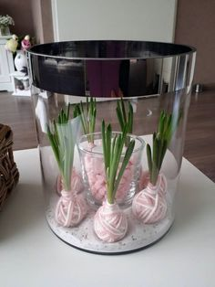 Hast+Du+schon+Blumenzwiebeln+ins+Haus+geholt?+Wir+haben+10+tolle+Dekoideen+mit+Blumenzwiebeln+für+Dich!