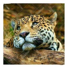Leopard Closeup 5D DIY Paint By Diamond Kit
