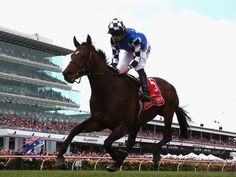 Protectionist comes home 4 lengths clear to win the 2014 Melbourne Cup.