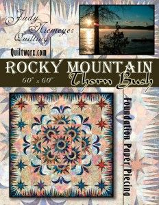 15 Best Quilts Judy Niemeyer Images In 2012 Quilting