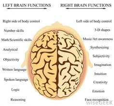 this is also a cool thing. not only a quad but also looking at left and right brain