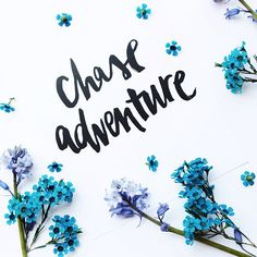 chase #adventure | #lettering