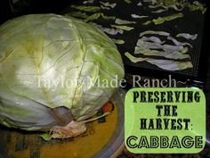 Preserving The Harvest: Dehydrating Cabbage Is An Easy Way To Preserve! #TaylorMadeRanch