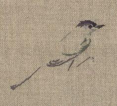 http://www.archive-host2.com/membres/images/1336321151/bestioles/oiseaux/fauvette/fauvette_brod.jpg