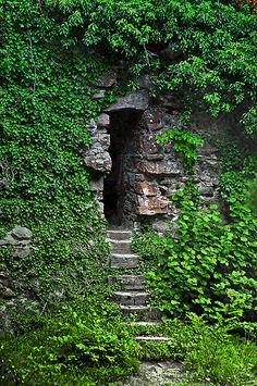 Ivy covered walls of a castle ruin,  Go To www.likegossip.com to get more Gossip News!