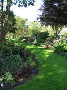 My goal this summer is to mimic this inviting grass path in my backyard -- a traditional landscape by Woodburn & Company Landscape Architecture, LLC