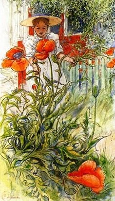 Poppy - by Carl Larsson - (summer garden, art, illustration, painting, watercolor) Carl Larsson, Large Painting, Painting & Drawing, Art Sur Toile, Illustration Art, Illustrations, Drawn Art, Arts And Crafts Movement, Museum Of Fine Arts