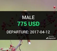Flight from Houston to Male by Turkish Airlines    BOOK NOW >>>