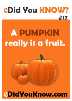 A pumpkin really is a fruit. http://edidyouknow.com/did-you-know-17/