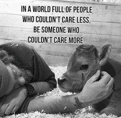 Save the animals #govegan 🌱