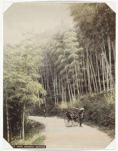 Anonymous   Riksja en bamboetuin aan de weg naar Mogi, Anonymous, 1890 - 1894   Onderdeel van Album met 69 foto's van een reis door Japan.