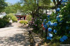 Japaninfo added 63 new photos to the album: แดดอ่อนๆ+อาหารเจ+เด็กๆ+พระพุทธรูป+อาจิไซ@วัด Yata-dera/Nara — at 矢田寺.
