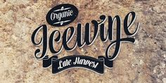Lovely script typeface designed by Emil Karl Bertell . Voyage is a smooth and friendly vintage script family of two weights and ornament . Typography Letters, Lettering, Script Typeface, Modern Graphic Design, Font Family, Glyphs, Make Me Happy, Cool Designs, Logo Design