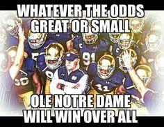 Nd Football, Notre Dame Football, College Football, Go Irish, Irish Pride, Lou Holtz, Irish Catholic, Fighting Irish, Miami Dolphins